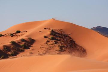 The orange sand in the sun