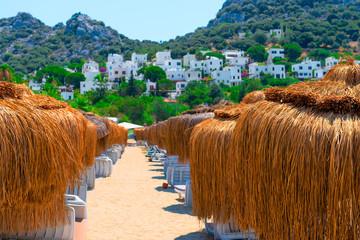 Straw umbrellas on the sandy beach