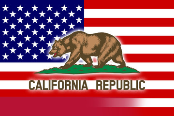 USA and California State Flag