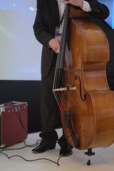 man playing on a double-bass