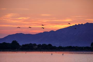 Beautiful sunrise on Sardinia island