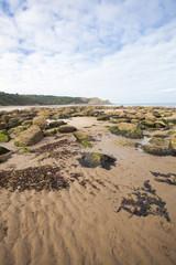 Textured sand, rocks and seawead natural coastal image