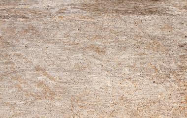 bleached driftwood