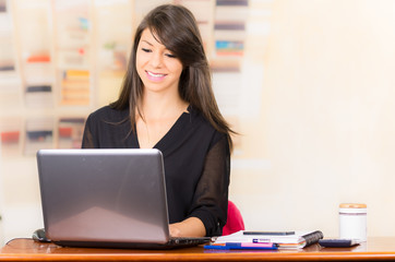 Beautiful young brunette girl working with laptop