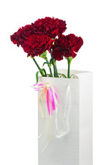 Gift Box and Bouquet from Carnations Flowers Isolated on White.