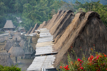 Traditional village Bena rooftops in Flores island