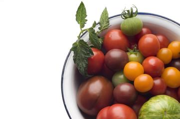 Verschiedene Tomaten in Schüssel