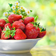 Strawberries in a plate against natural green background