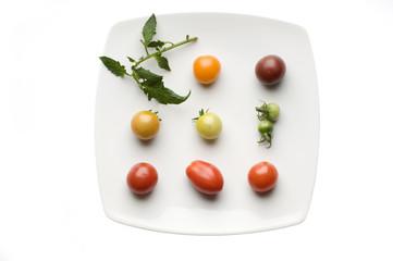 Verschiedene alte Tomatenraritäten auf Teller