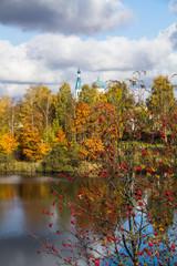 рябина осенью на берегу озера