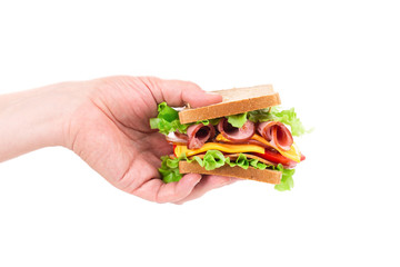 Sandwich in hand isolated