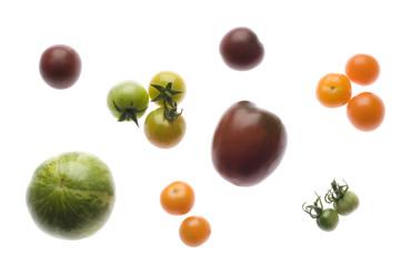 Verschiedene Tomatenraritäten