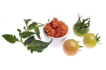 Tomaten-Paprika-Dip