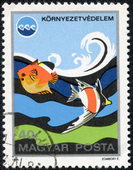 stamp from Hungary shows image of fish in water