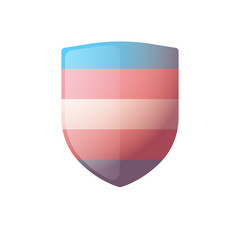 shield with a transgender pride flag