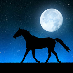 Silhouette of a horse in the night sky with the moon