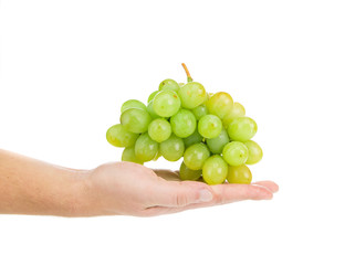 Hand holding green grape.