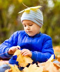 Portrait of a little boy in autumn park