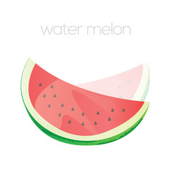 Vector water melon
