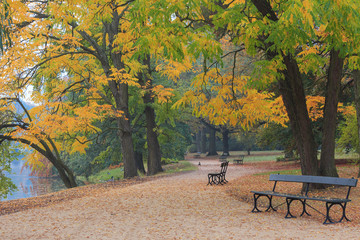 Autumn in the park. Royal Lazienki Park in Warsaw