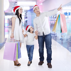 Family in the malll with shopping bags