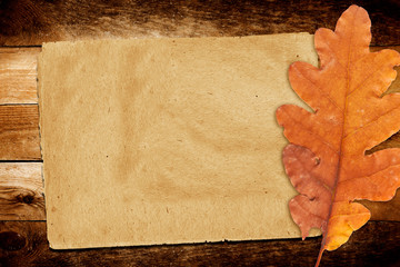 Old grunge paper with autumn oak leaves  on the abstract backgro