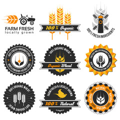 wheat production label set with modern, vintage elements
