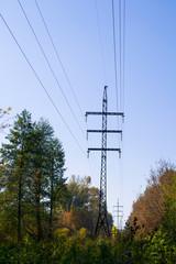 Линии электропередач в лесу