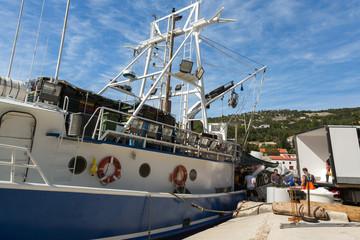 Déchargement de poisson du bateau de pêche