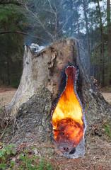 Smoking stump