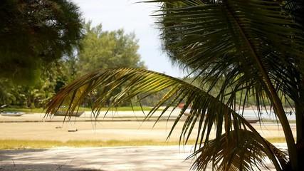 Sunny Tropical Beach in Thailand.