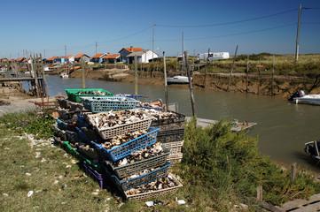 Empilement de paniers de coquilles d'huitre à la Tremblade
