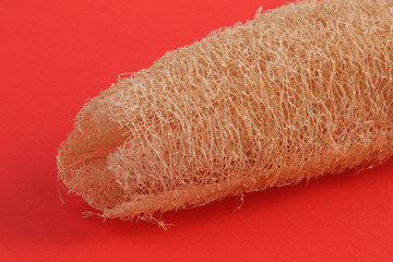 Close up photo of a luffa, loofa used in skin care