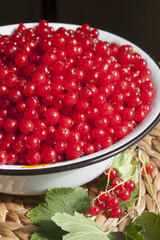 Red currant berries in a large bowl  and a bunch of currant clos