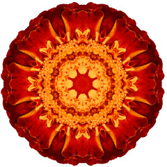 Flower mandala on white background