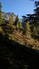 Herbstliche Laubbäume im Karwendel