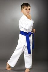 Portrait of a karate kid  in kimono ready to fight