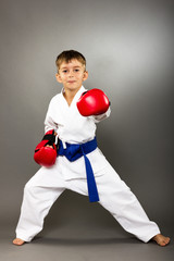 Little boy with red gloves training karate