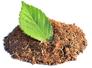 Pile of brown clay with green leaf