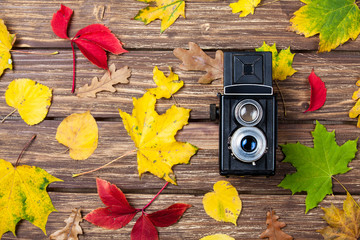 Autumn leafs and camera on wooden table.