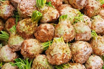 Herbst - Gemüse - Sellerie