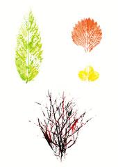 Echter Acryl Abdruck von Pflanzenelementen