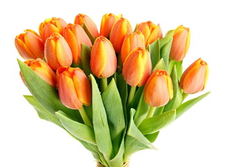 Beautiful bouquet of fresh orange tulips