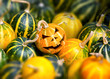 canvas print picture - Smiling Jack-O-Lantern. Close-up of many small pumpkins