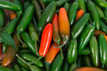 close up jalapeno pepper