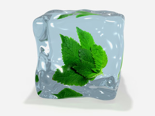 Mint leaf in ice