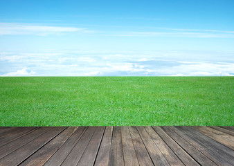 fresh grass and old wooden background