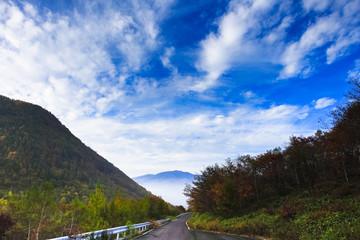 紅葉の桟敷山林道4