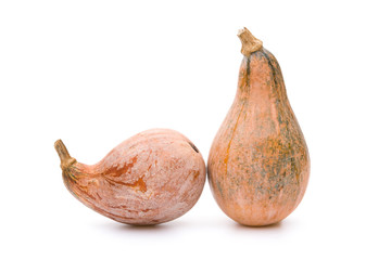 two ripe pumpkins on a white background