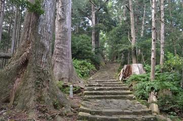 世界遺産 熊野古道